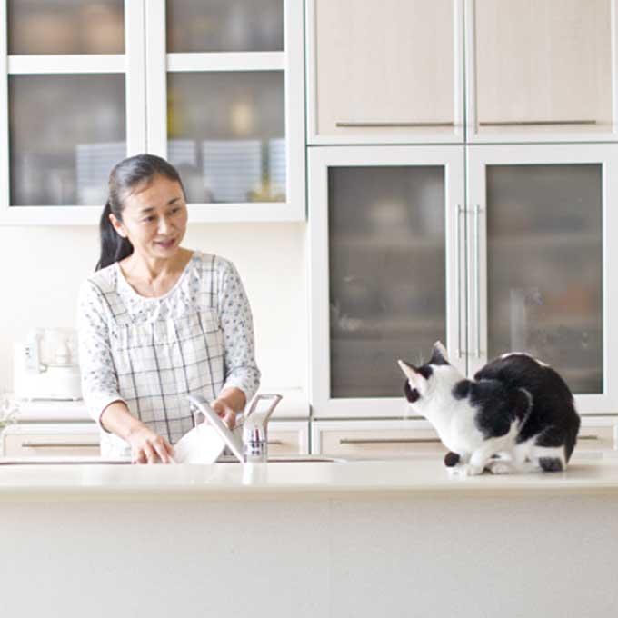 고양이가 집사를 배려할 때 하는 행동 3