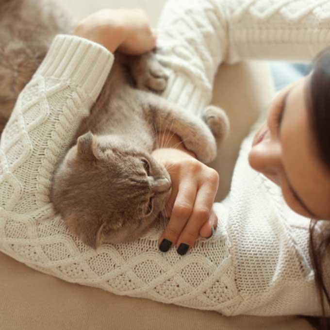 집사 행동이 맘에 안 들 때 고양이가 하는 행동 5