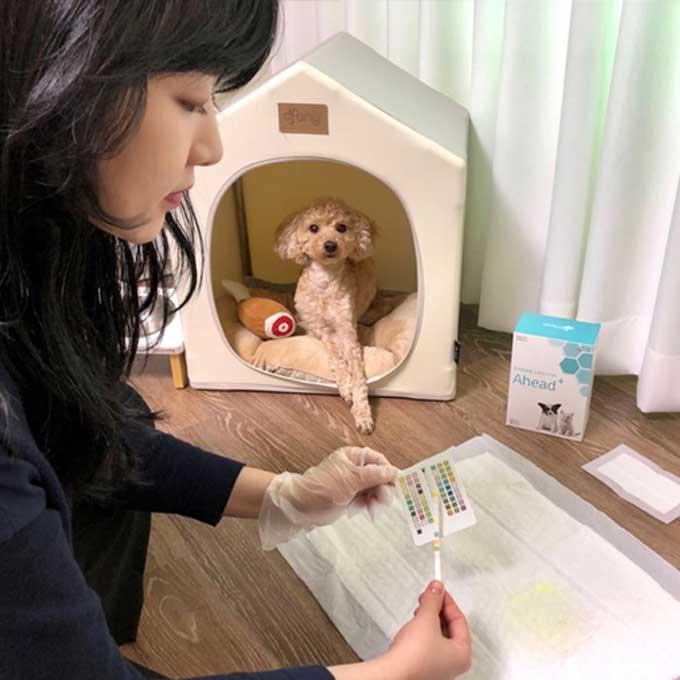 GS25, 반려동물 질병 검사 키트 이달부터 판매