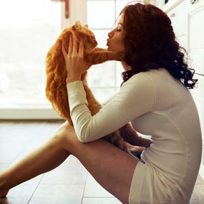 고양이가 불행하다고 느낄 수 있는 대표적인 집사 행동 7