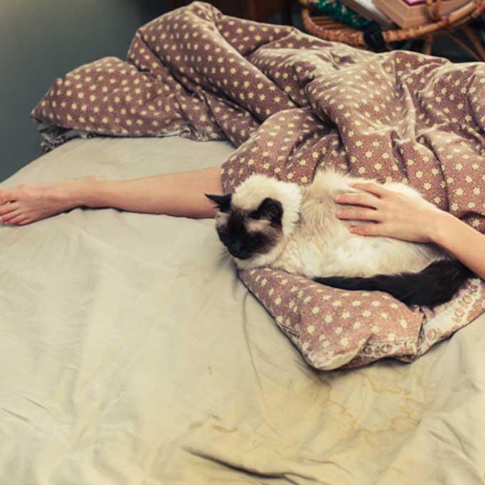 고양이와 잘 지내는 집사라면 공감하는 9