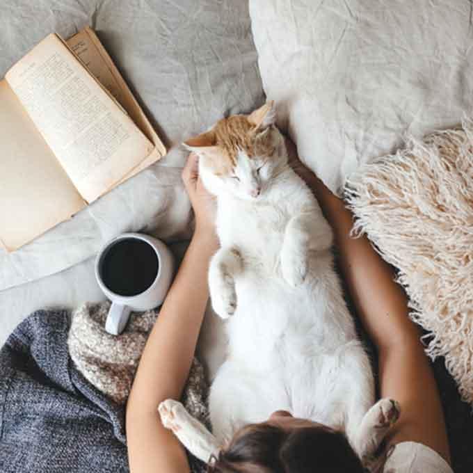고양이를 '정말로' 사랑하는 사람 특징 5