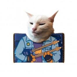 다년간의 집사 경력자들만이 알고 있는 고양이 진실 6
