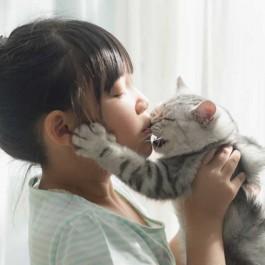 고양이를 좌절시키는 집사 행동 6