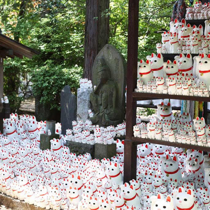 일본의 어느 사찰