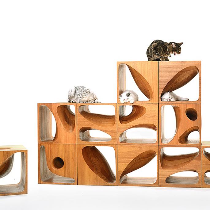 고양이와 애묘인의 원더랜드!