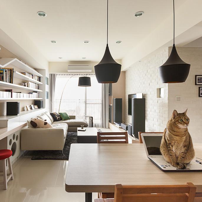 고양이와 사람이 함께 쓰는 집