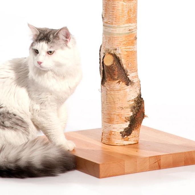 통나무를 있는 그대로 이용해 만든 고양이 스크래처