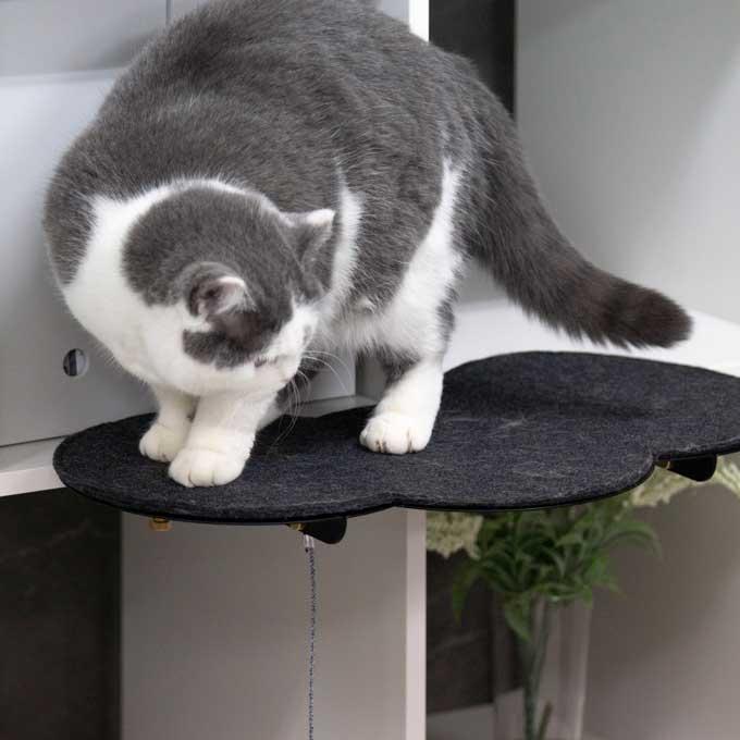 기존 가구에 만들어주는 냥님 캣워크 Catssup