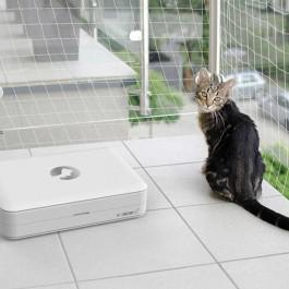 고양이 응급상황, '집사'도 준비해야… 잘 만들어진 반려동물 응급키트 화제