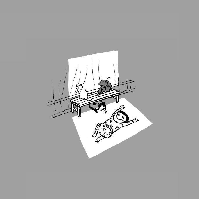 고양이사전. 제3화 빛