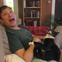 지금 당장 가슴이 따뜻, 정신 건강에 좋은 고양이 사진 모음