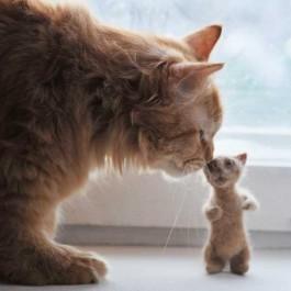 집사들의 고양이 사랑법 ③ - 빗질로 나온 털로 만든 반려묘 인형