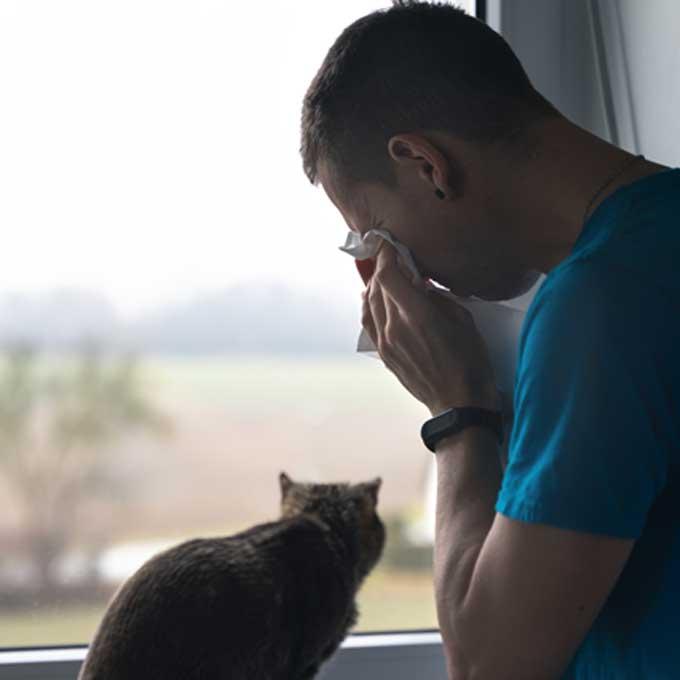 집사가 울 때 고양이가 반응하는 진짜 이유