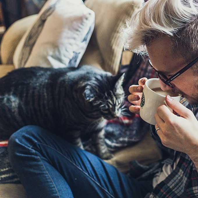 Q. 고양이는 왜 나를 졸졸 따라다닐까