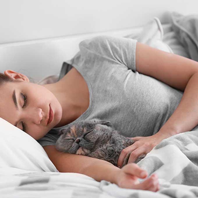고양이가 집사 팔이나 겨드랑이에서 잘 때 마음 4