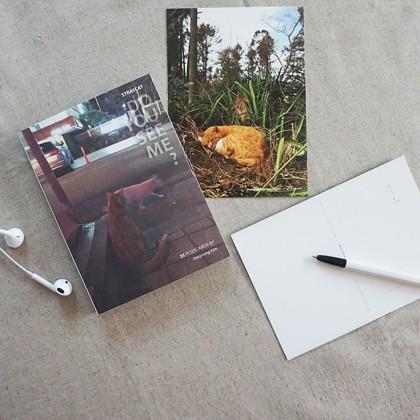 러브프롬캣 엽서책 - DO YOU SEE ME?