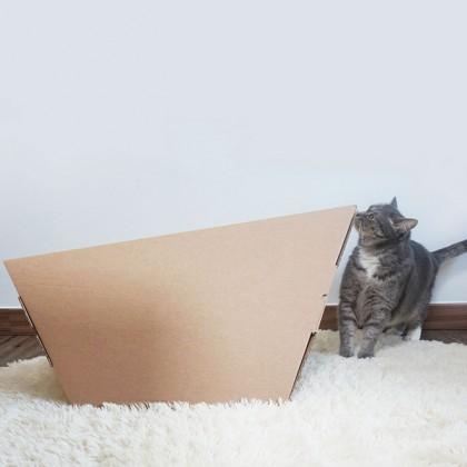 냥님들의 블랙홀, 골판지 캣터_CAT-TER