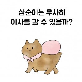 연희동 출장집사. 제18화 개포동 삼순이