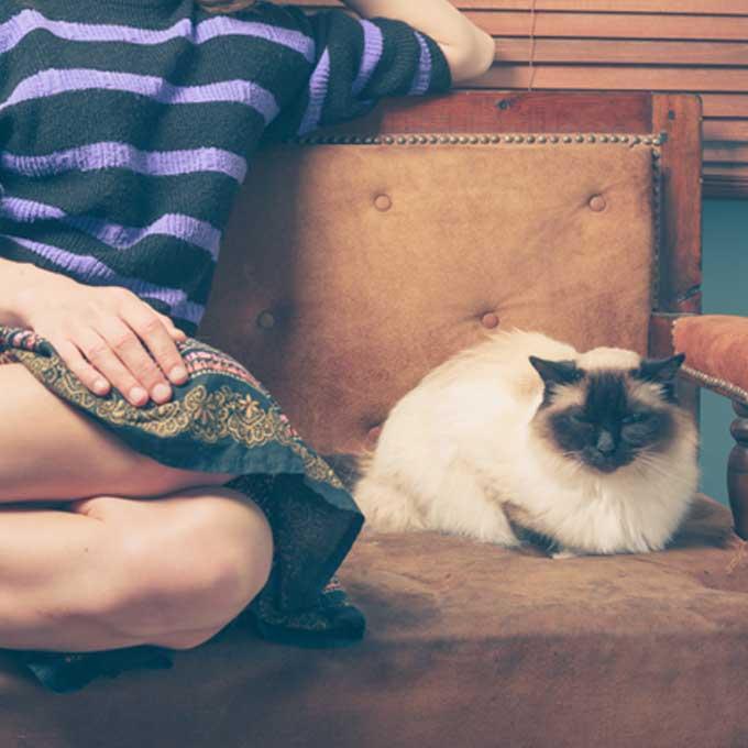 """""""같이 고양이 집회 중?"""" 냥님이 집사 옆에 앉아 있을 때 기분 4"""